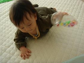 遊ぶ息子_3.JPG